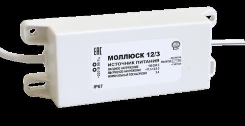 mollusk-12-3