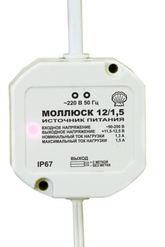 mollyusk12-15